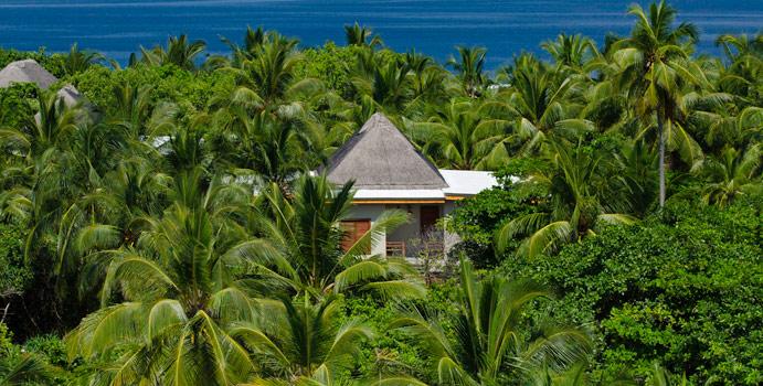 Tree House, Vogelperspektive, Amilla Fushi, Malediven
