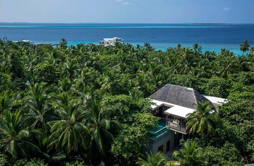 Tree House, Amilla Fushi, Malediven