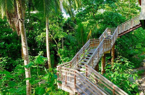 Treppe zum Tree House, Amilla Fushi, Malediven