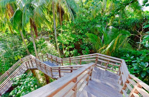 Treppenaufgang Tree House, Amilla Fushi, Malediven
