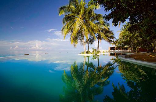 Pool, Palmen, Amilla Fushi, Malediven