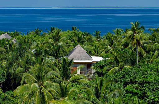 Wellness Tree House, Amilla Fushi, Malediven