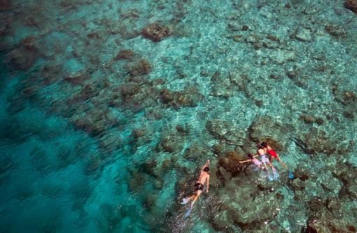 Schnorcheln am Hausriff, Anantara Dhigu, Maledives