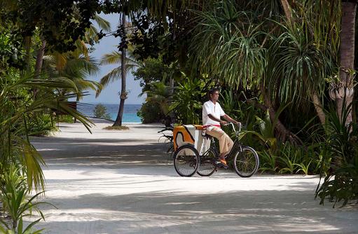 Palmenweg zum Traumstrand, Anantara Kihavah Villas, Maldives