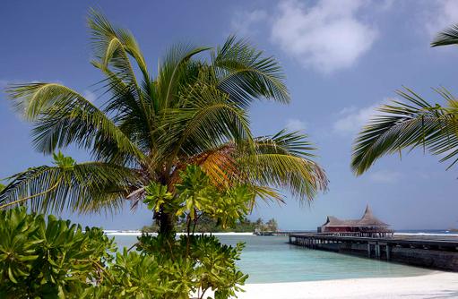 Strand, Blick auf Baan Huraa Restaurant, Anantara Veli Maldives Resort