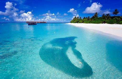 Hai in Fischschwarm, Angaga Island Resort & Spa, Maldives