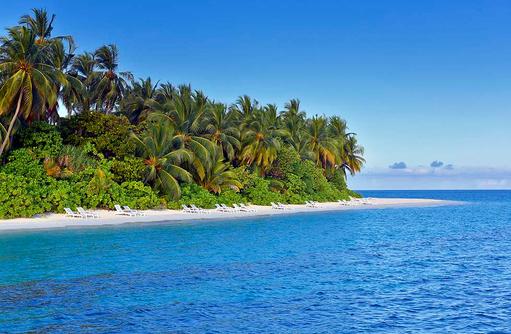 Blick auf die bewachsene grüne Insel vom Meer aus, Angaga Island Resort & Spa, Maldives