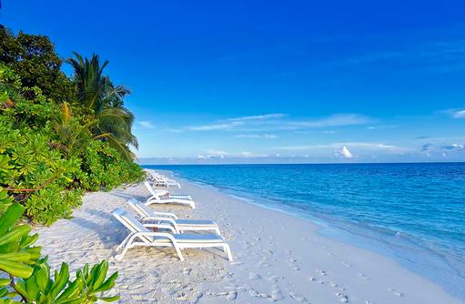Traumstrand mit üppiger Vegetation, Angaga Island Resort & Spa, Maldives
