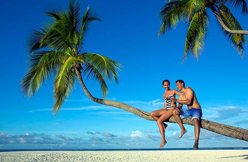Traumstrand mit Palmen, Angsana Velavaru, Malediven