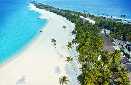 Langgezogener Strand mit Palmen, Atmosphere Kanifushi Maldives