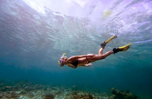 Schnorcheln, Unterwasserwelt, Bandos Maldives