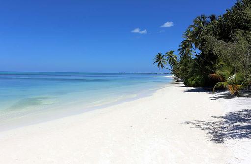 Strand, Canareef Resort, Malediven
