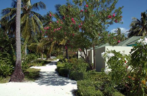 Strandwege, Canareef Resort, Malediven