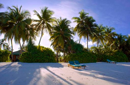 Strand zum Sonnenaufgang, Canareef Resort, Malediven