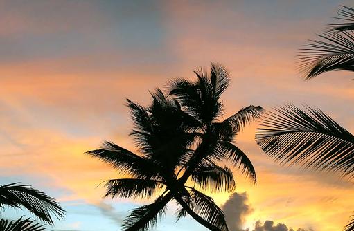 Sonnenuntergang am Steg, Canareef Resort, Malediven