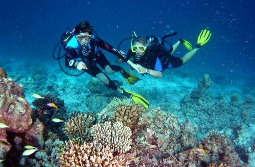 Taucher, Canareef Resort, Malediven
