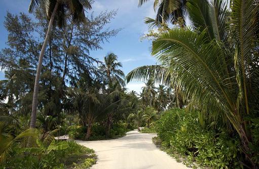 Inselwege, Canareef Resort, Malediven
