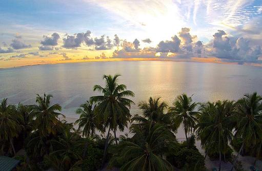 Sonnenaufgang, Palmen, Canareef Resort, Malediven