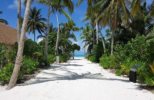 Inselwege | Cinnamon Velifushi Maldives