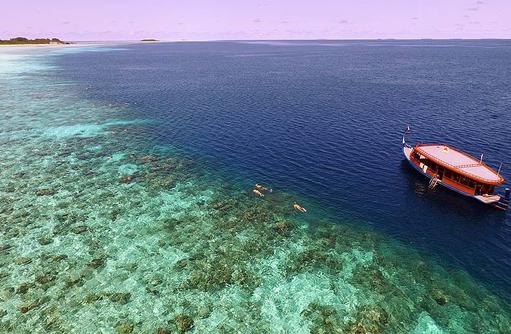 Boot, Cocoon Maldives