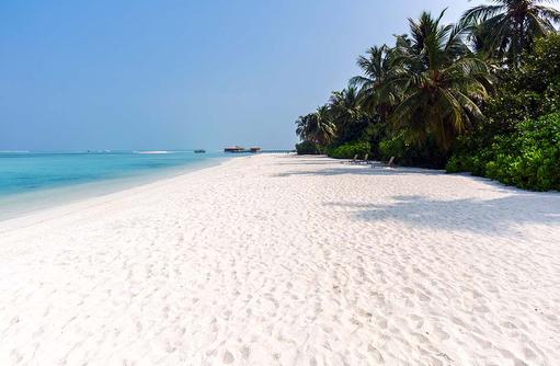 Weißer Sandstrand, Cocoon Maldives