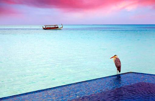 Dhoni in der Dämmerung, Conrad Maldives Rangali Island, Maldives