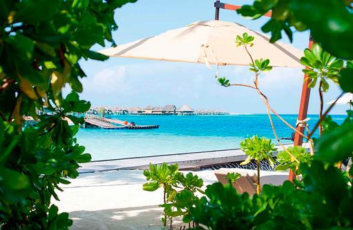Blick ausd dem Grünen ins Blaue, Constance Halaveli Resort, Maldives