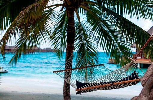 Hängematte in Palmen, Constance Halaveli Resort, Maldives