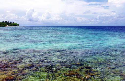 Riff, Blaue Lagune, COOEE OBLU at Helengeli, Maldives