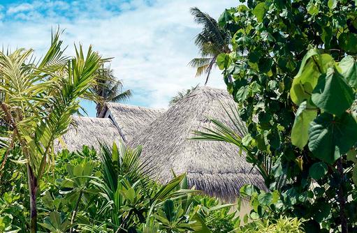 Tropische Inselwelt des Dhigufaru Island Resort