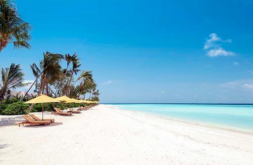 Der Traumstrand des Dhigufaru Island Resort