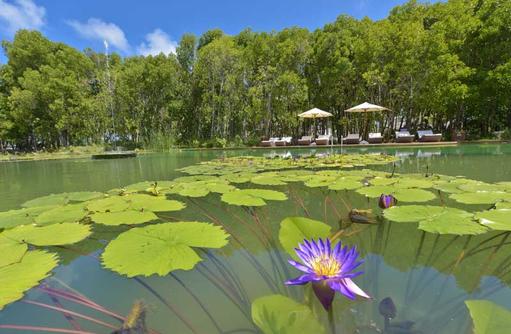 Dreamland Unique Island Resort