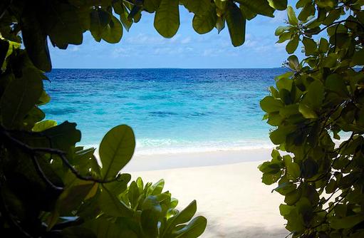 Blick zum Strand, Dusit Thani Maldives