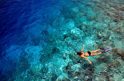 Schnorcheln am Hausriff, Dusit Thani Maldives