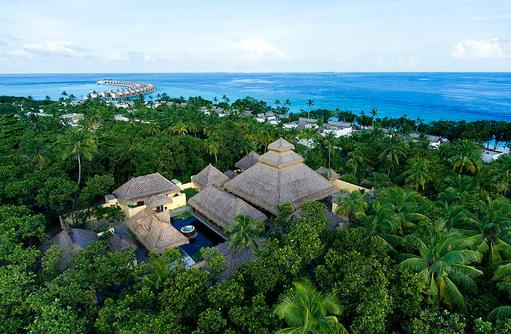 Blick ins Gründe der Insel, Emerald Maldives