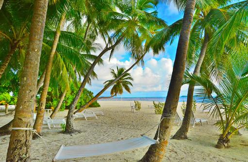 Hängematte in Palmen, Strand, Fihalhohi Island Resort, Maldives