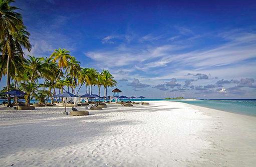 Sonnenliegen und Palmen am Traumstrand, Finolhu, Malediven