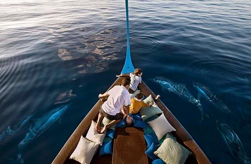 Delfinbeobachtung, Delfin Cruise, Four Seasons Resort Maldives at Kuda Huraa