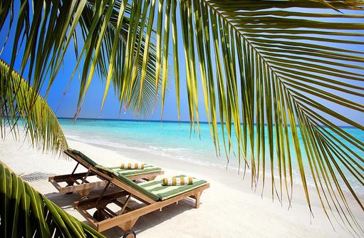 Liegen unter Palmen, Furaveri Island Resort & SPA, Maldives
