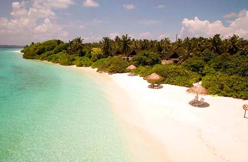Strand mit Liegen von oben, Furaveri Island Resort & SPA, Maldives