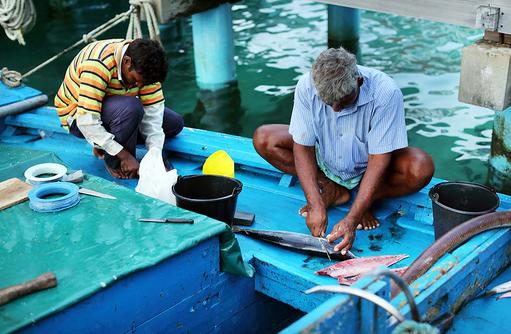 Fischer, Gangehi Island Resort, Maldives