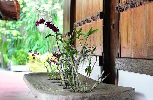 Ginger Spa, Pflanzen, Gangehi Island Resort, Maldives