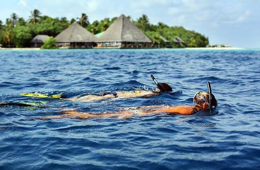 Schnorcheln, Gangehi Island Resort, Maldives