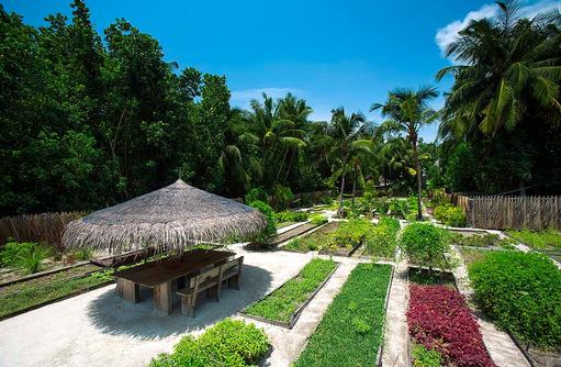 Organic Garden, Gili Lankanfushi, Maldives