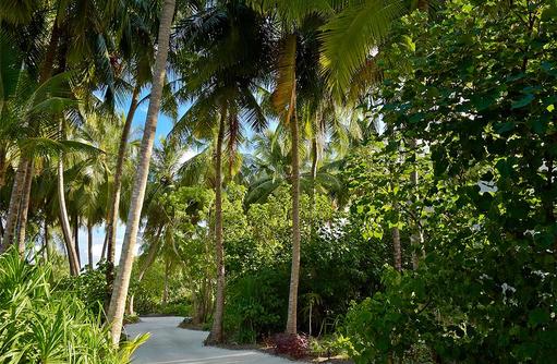 grüne Oase im Inselinneren, Kandima Maldives