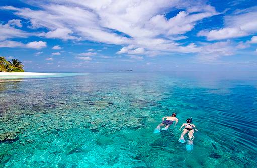 Schnorcheln am Hausriff | Kandolhu Maldives