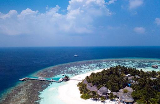 Blick auf das Riff | Kandolhu Maldives