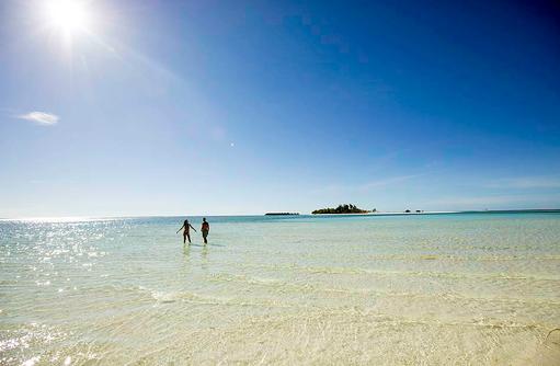 Entdeckungstour, Muscheln, Seesterne I Kanuhura Maldives