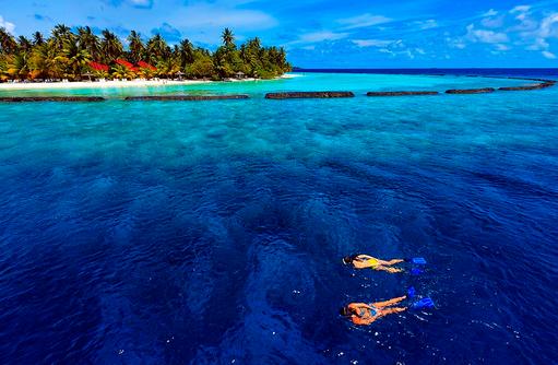 Schnorcheln am Hausriff, Kurumba, Malediven