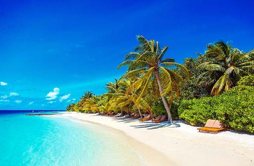 Strand, Liegestuhl, Palmen, Lily Beach Resort & SPA, Malediven